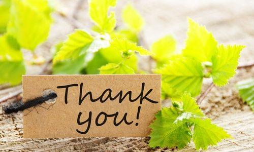 「ありがとう」の言葉効果は想像以上に強いと思った話