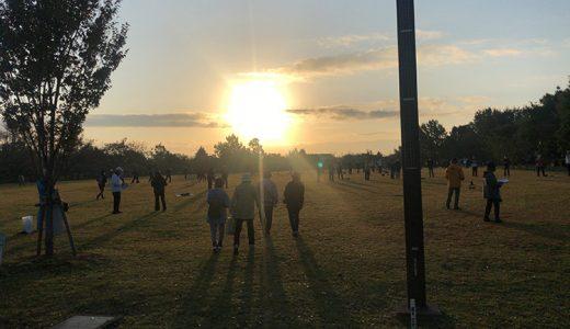 早朝の公園に行くと面白いことがいっぱいある話