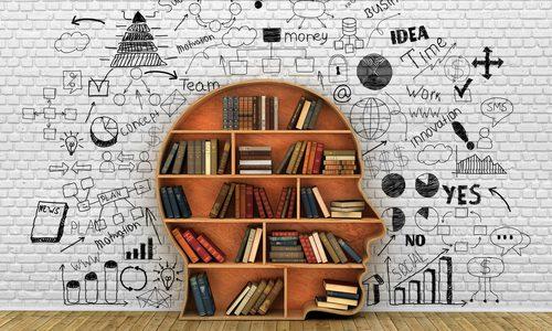 経験と知識が備わってこそ信頼される話